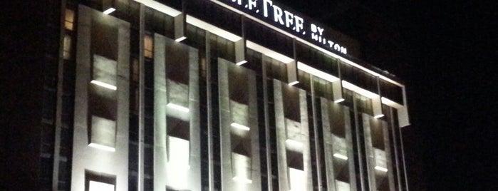 DoubleTree by Hilton Hotel Dallas - Richardson is one of Craig'in Beğendiği Mekanlar.