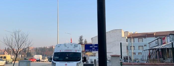 Helvaci Ali is one of Marmara.