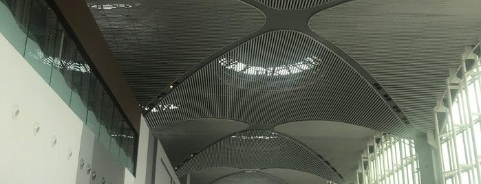 Dış Hatlar Gidiş Terminali is one of Alejandroさんのお気に入りスポット.