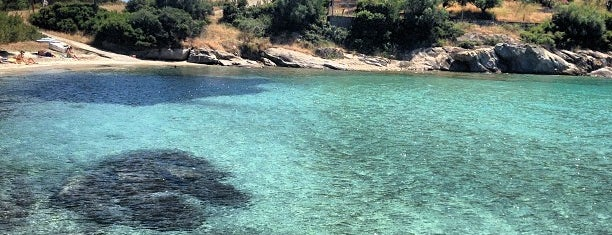 Kalogria Beach is one of Halkidiki.