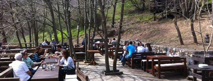 Kulindağ Dağ Evi is one of İstanbul Cafe/Restorant.