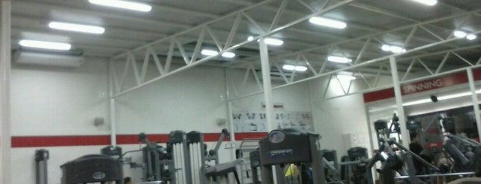 Champion Fitness is one of Tempat yang Disukai priscila.