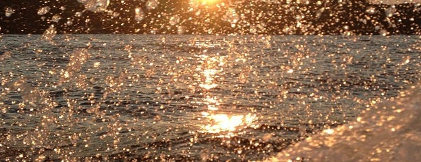 Lake of the Ozarks is one of Randallynn : понравившиеся места.