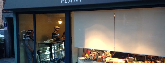 Plant Bakery is one of South Korea.