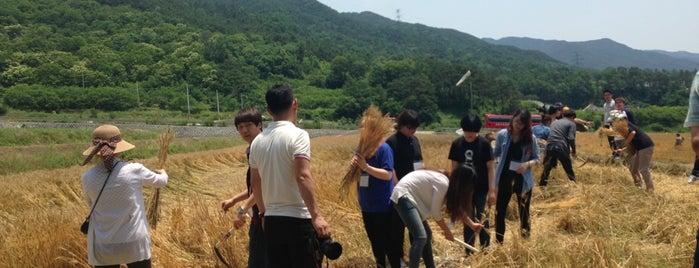 구례 친환경농업 시험장 is one of Local.
