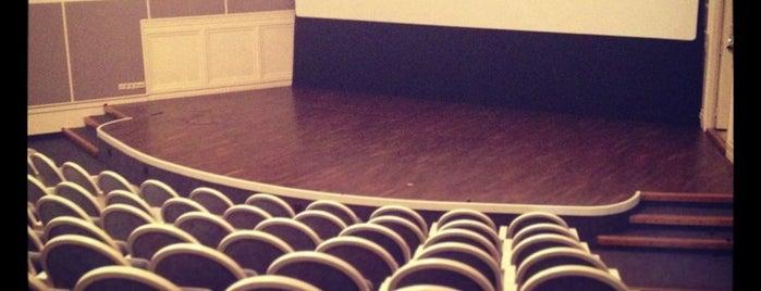 Angleterre Cinema Lounge is one of питер.