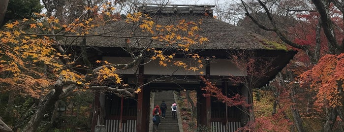 小倉山 常寂光寺 is one of Places to go in Kyoto.
