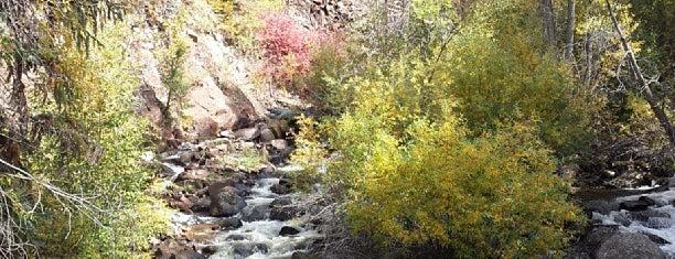 Hunter Creek is one of Lugares favoritos de Kyle.