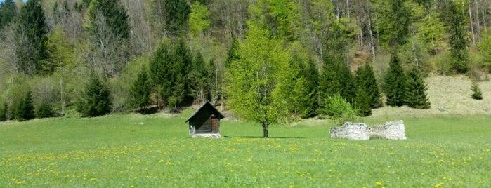 Pokljuška Soteska (Pokljuka Ravine) is one of Slovenia 2013.