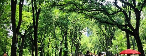 Central Park is one of Recuerdos de USA.