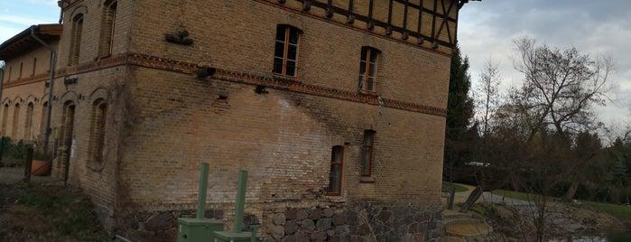 Alte Mühle Tornow is one of Orte, die Paul gefallen.