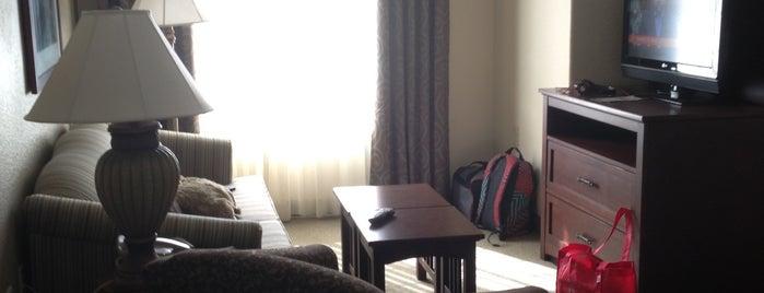 Staybridge Suites Phoenix-Glendale is one of Good hotels!.