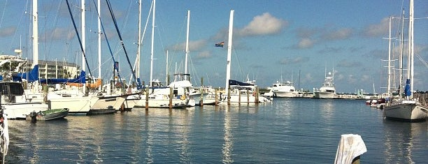 Key West Bight Marina is one of vacation hot spots.