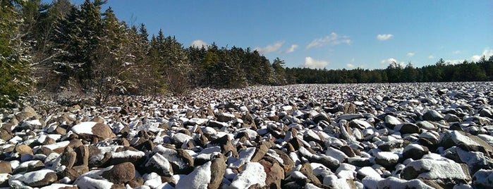 Boulder Field Hickory Run State Park is one of Budget Friendly Attractions in PA.