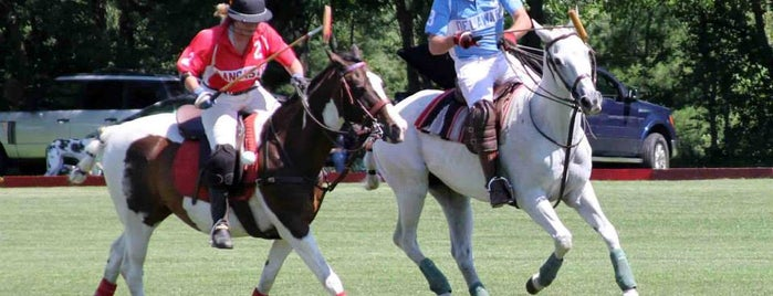 Lancaster Polo Club is one of Fan-Friendly PA.