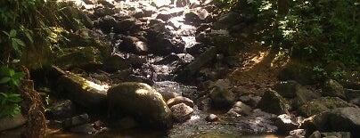 La Mina Trail is one of Lugares guardados de Andrea.