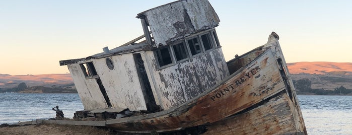 Point Reyes Shipwreck is one of San Fran (Nat & Ryan Wedding).