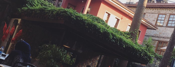 Alp Paşa Boutique Hotel is one of My wine's spots.