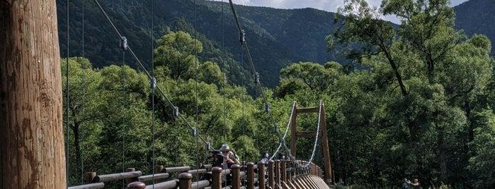 明神橋 is one of Lieux qui ont plu à 高井.