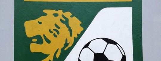 Estadio León is one of International Sports~Part 1....