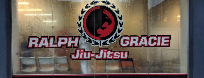 Ralph Gracie Jiu-Jitsu is one of Muchoさんのお気に入りスポット.