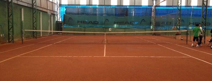 Winner Tennis is one of Locais salvos de Francis.
