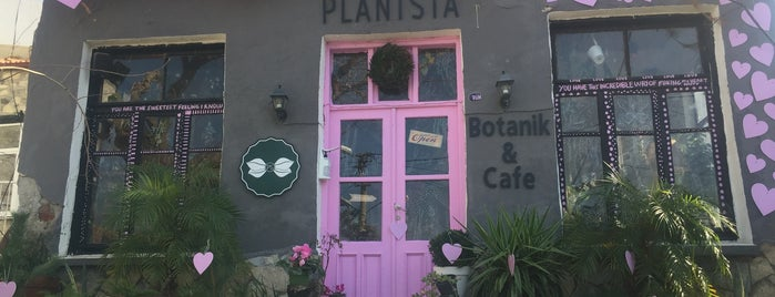 Plantsta Botanik & Cafe is one of İzmir.