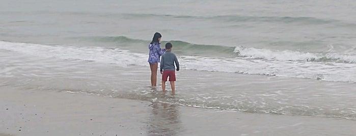 Seawatch Beach is one of Gespeicherte Orte von Lizzie.