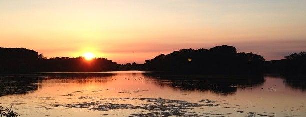 Swithland Reservoir is one of Lugares favoritos de Del.