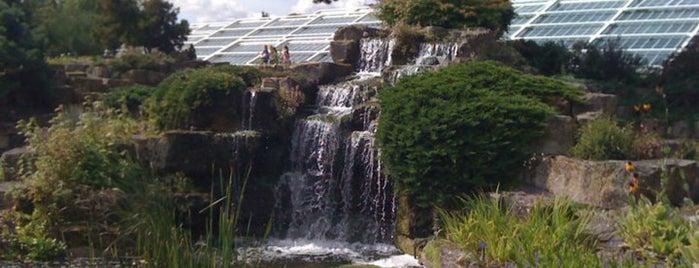 Royal Botanic Gardens is one of London.