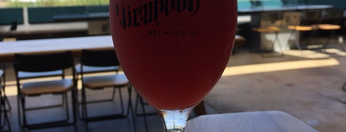 Viewpoint Brewing Company is one of Breweries.