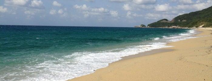 永田いなか浜 is one of Yakushima.