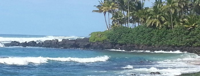 Hale'iwa Beach Park is one of Hawaii.