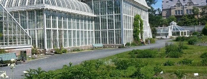 Giardino Botanico is one of Menovinkit.