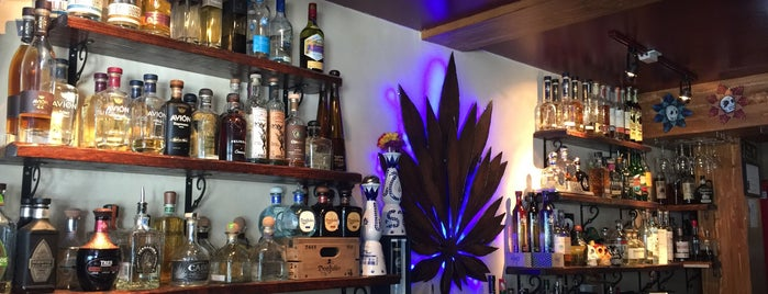 Agave 308 Tequila Bar is one of Key West.