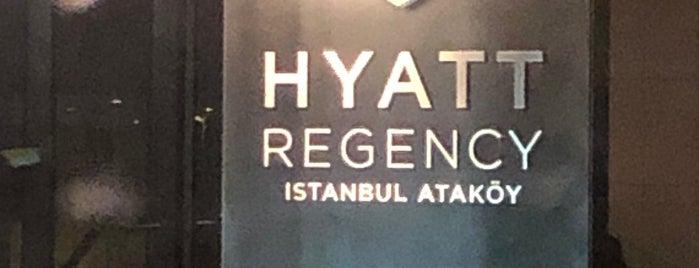 Hyatt Regency Hotel Saloon Manga is one of Sevgili Tadında +905318722997 Whatsapta.