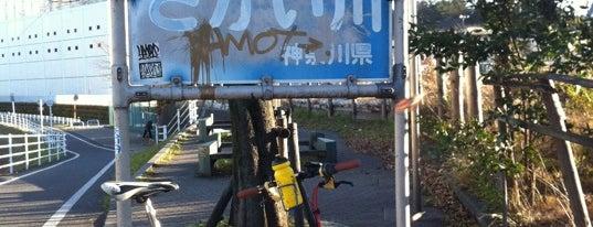 大和橋 is one of サイクリング大好き♥.