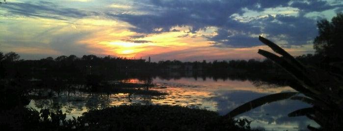LSU Lakes is one of Lugares favoritos de Greg.