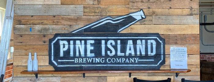 Pine Island Brewing is one of Craft Beer Pubs & Distributors.