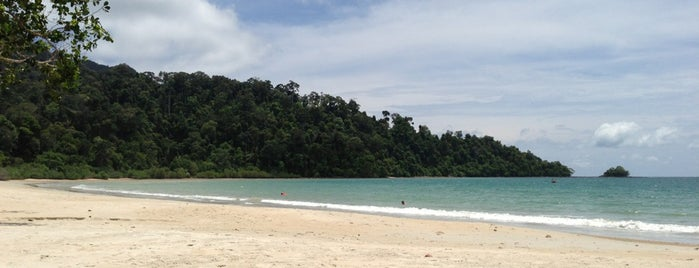 Beach, The Datai is one of Malaysia.