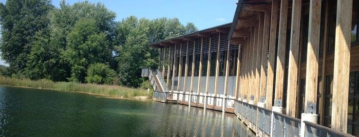 Indian Springs Metropark is one of สถานที่ที่ Cindy ถูกใจ.