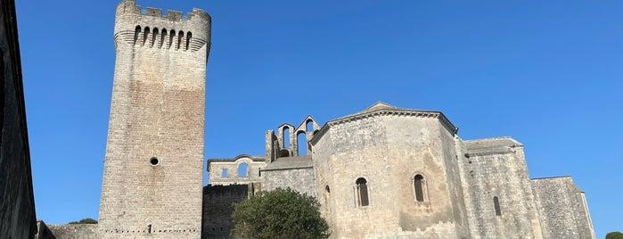 Abbaye de Montmajour is one of Arles.