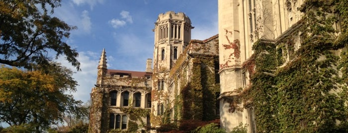 The University of Chicago is one of The Chicago Experience.