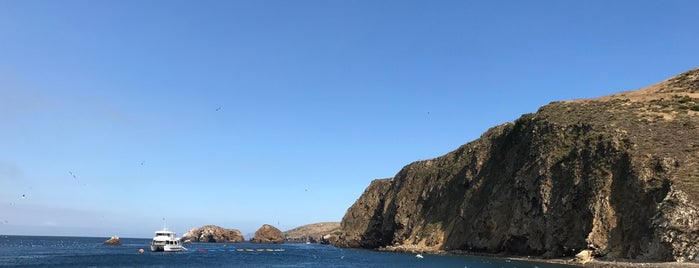 Channel Islands is one of Attractions.
