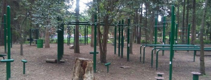 Personal Training Gym Bosque de Tlalpan is one of Lugares favoritos de Francisco.