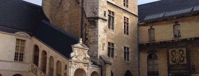 Musée des Beaux-Arts is one of Dijon.