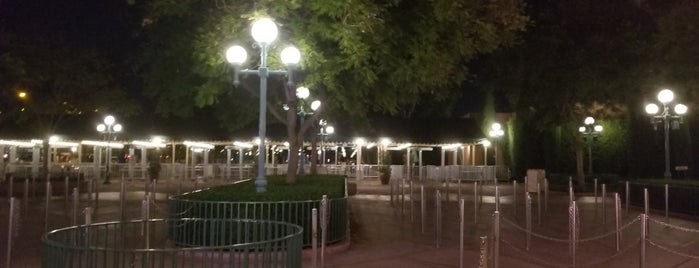 Disneyland Security Gates is one of Christianさんのお気に入りスポット.