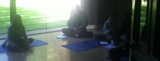 ATMADEV Yoga, Reiki, Psicoterapia is one of Yoga.