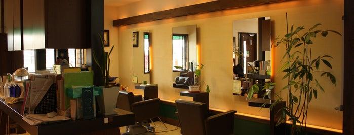 natural hair puregreen is one of CM'ın Kaydettiği Mekanlar.