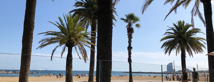 Palmito Beach Bar is one of Bcn Want to go.